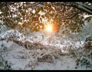 Snowy Sunset at Dilton